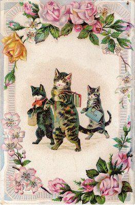 Early 1900's postcard with kittens going to school. #Gato vía Jennifer Manteca