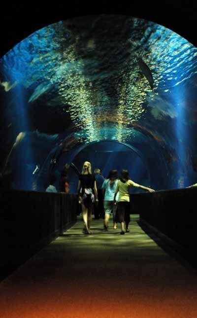 The Oklahoma Aquarium in Jenks