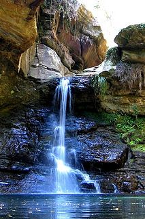 nature mobile wallpapers by xavierboswell99, via Flickr