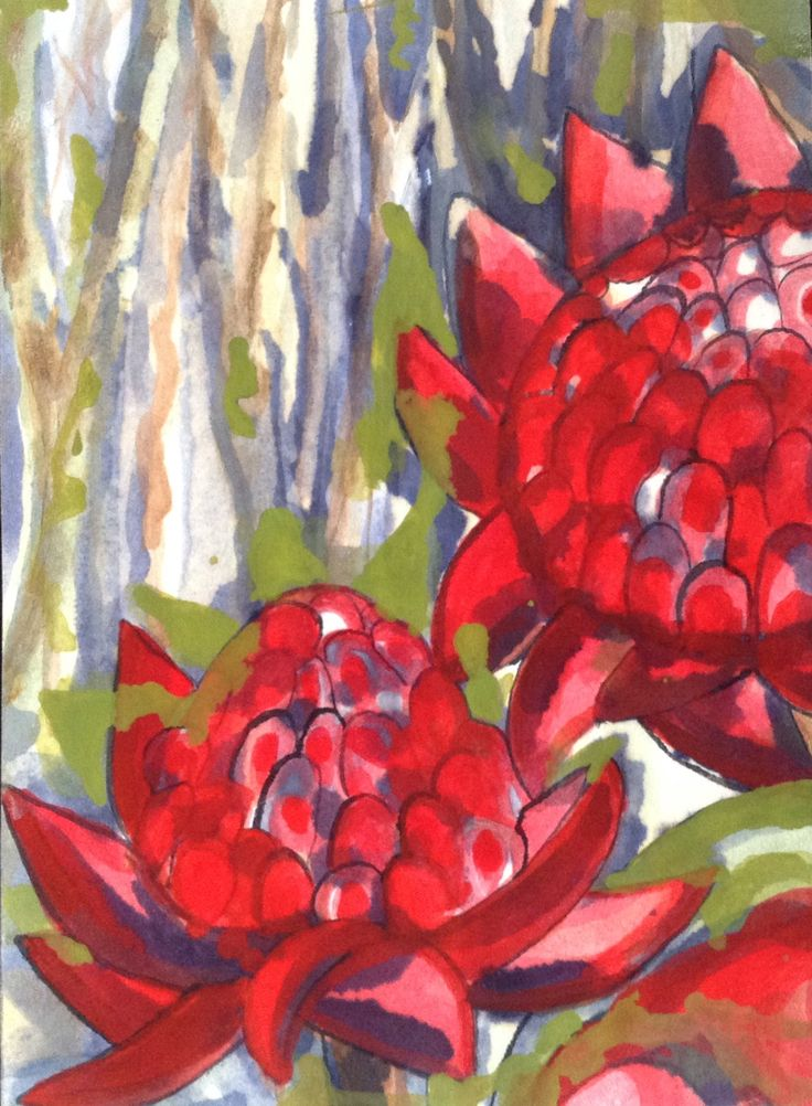 Waratahs on my neighbours fence. Water colour on paper. Lacquered.