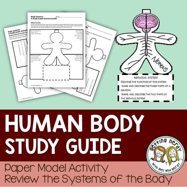 cadaver anatomy Flashcards and Study Sets | Quizlet