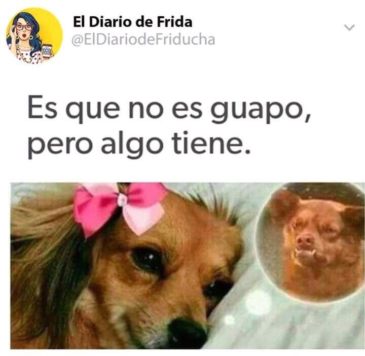 Pin De Teidy Castellon Arauz En Diversion Memes Divertidos Imagenes Graciosa De Amor Memes