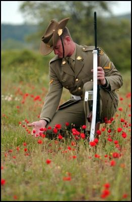 Anzac poppies and soldier - In memory our Anzac Heroes and loved ones who did us proud #AnzacDay #Anzac #heroes