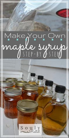 backyard maple syrup | tapping trees | make your own maple syrup | DIY maple syrup | from sap to syrup | how to make maple syrup | making maple syrup step by step | the steps to make syrup | homeschool | homestead | the living simply | SoulyRested.com