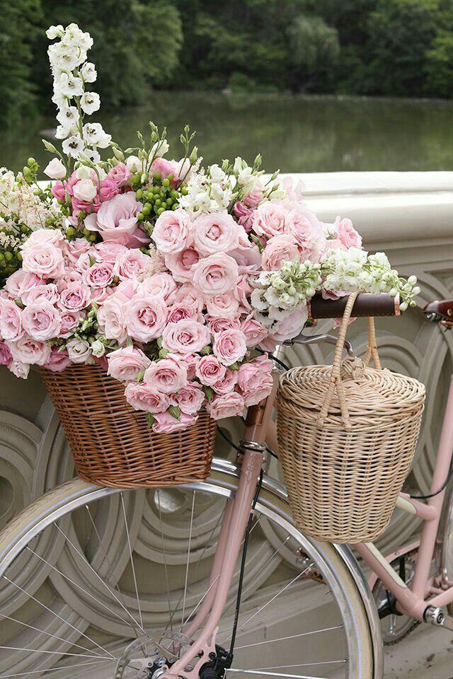 Pin von Mariú Accinelli auf Romantic Bikes Rosa fahrrad
