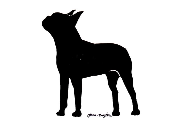boston terrier silhouette - Google Search