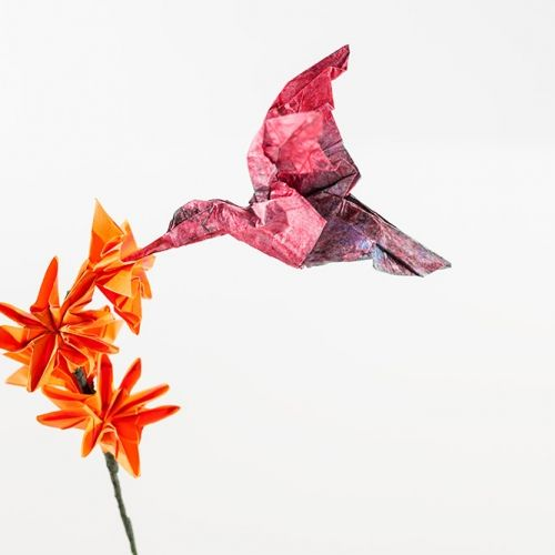 Bird & flower origami. Stunning origami artwork displays for all corporate events, exhibitions and more.