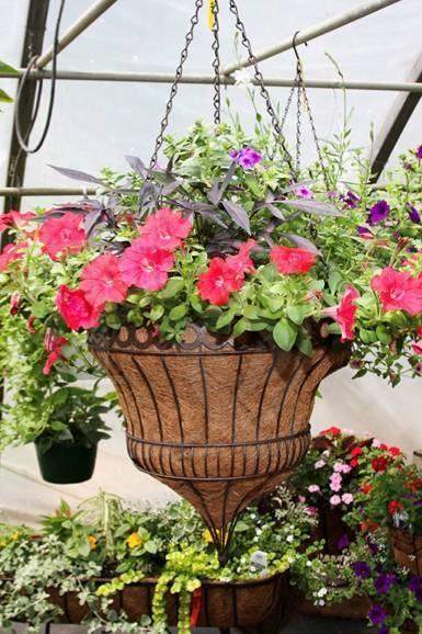 Victorian Hanging Flower Baskets : Best images about hanging baskets on hooks