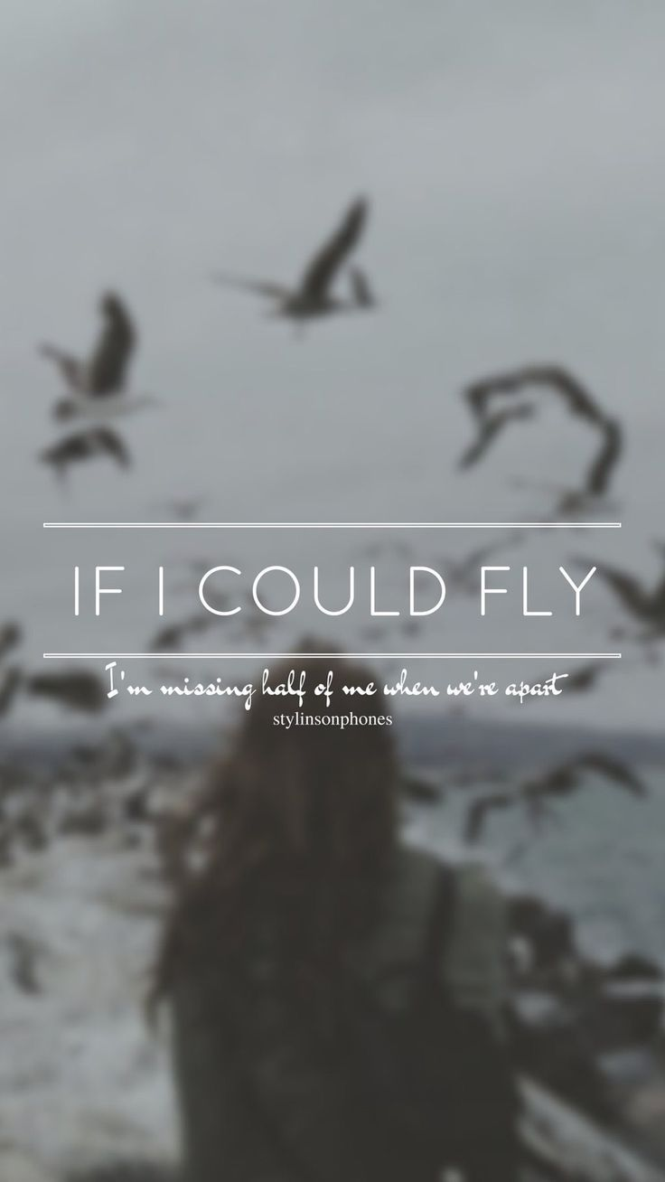 If I Could Fly // One Direction // ctto: @stylinsonphones (on Twitter)
