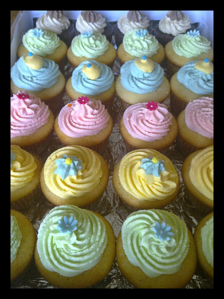 Cheerful - Cupcakes galore! Rainbow flavours.