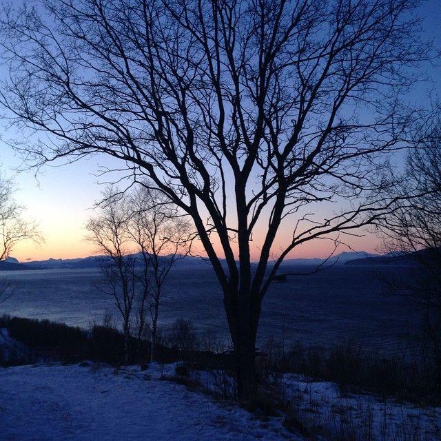 """Nydelig lys i dag i nord Norge #norwegian ( ingen filter på bildet) #narvik non filter on The pic  #naturelovers #norwegian #picsnorway #horisont…"""