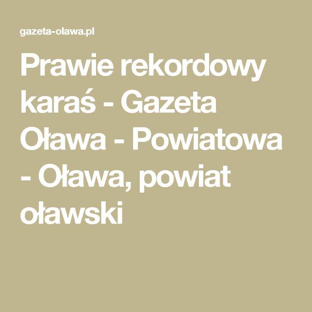 Prawie rekordowy karaś - Gazeta Oława - Powiatowa - Oława, powiat oławski