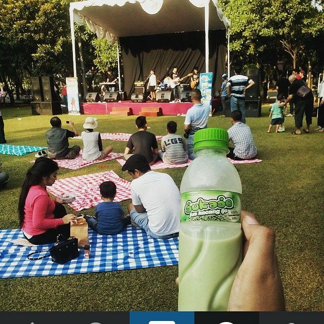 Picnic with Sound of Sunset