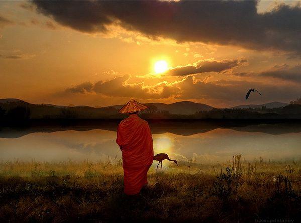 1. Lebe mit Mitgefühl Mitgefühl ist eine der meist verehrtesten Bestandteile im Buddhismus und großzügiges Mitgefühl ist ein Zeichen eines hoch verwirklichten menschlichen Wesens. Mitgefühl hilft d…
