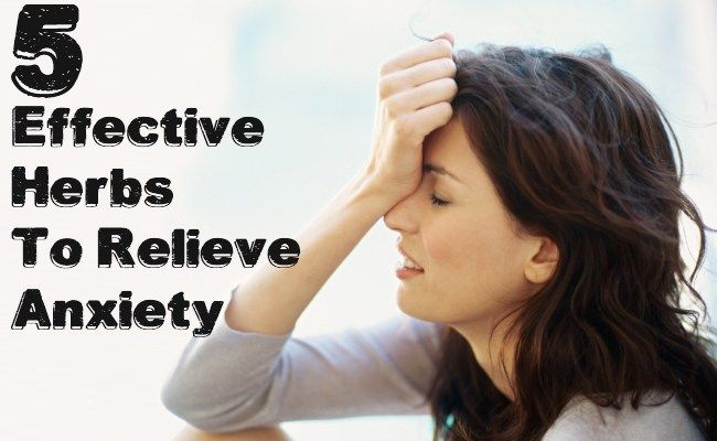 Effective Herbs To Relieve Anxiety