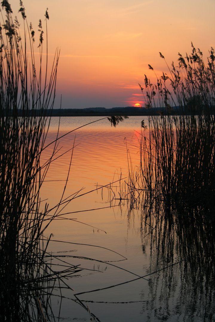 An einem schönen Abend bei so einem Sonnenunterga…