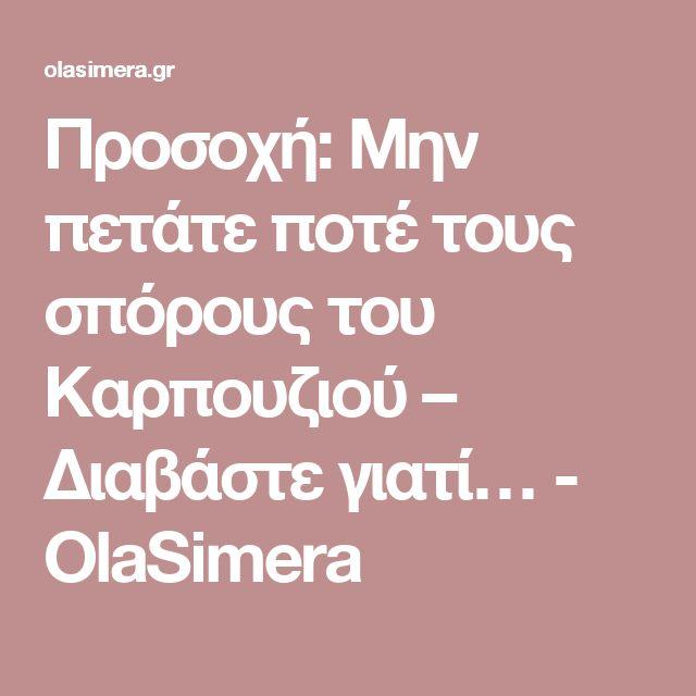 Προσοχή: Μην πετάτε ποτέ τους σπόρους του Καρπουζιού – Διαβάστε γιατί… - OlaSimera