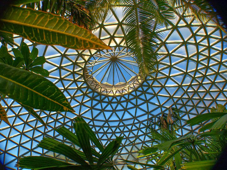 So many great photos from the dome at Mt Coot-tha.