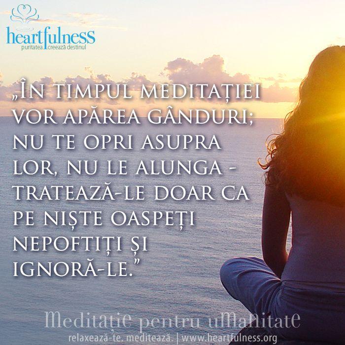 """""""În timpul meditației vor apărea gânduri; nu te opri asupra lor, nu le alunga - tratează-le doar ca pe niște oaspeți nepoftiți și ignoră-le."""" #hfnro #inspiratii_zilnice #heartfulness"""