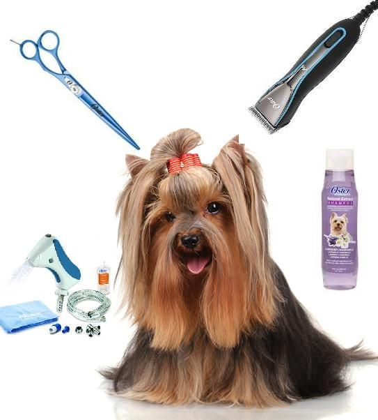 Supplier of Pet Grooming Equipment & Products