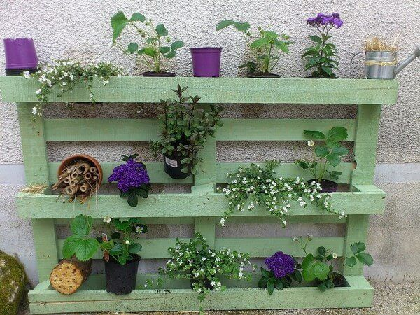 Here is another stunning peace of artwork done and made for you a garden herb with the help of retired wood pallets. Such is the beauty of the work and the flowers are adding the natural flavor in to it that is making it a must have pallet projects in your garden.