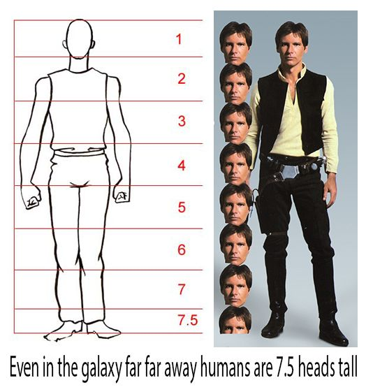 I use this picture to talk about human proportions in my art classroom.
