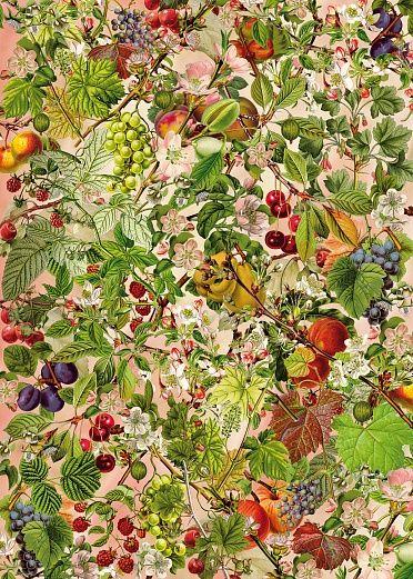 Im Obstgarten. Verwandeln Sie Ihre vier Wände in einen üppigen Obstgarten. Diese im nostalgischen Stil gestaltete Tapete der Künstlerin Barbar Behr weckt romanische Erinnerungen. Sie ist ein Augenschmaus für jeden Raum. #wallpaper