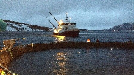 Foto: Knut Eirik Olsen / NRK