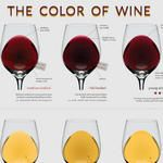 The Wine Color Chart