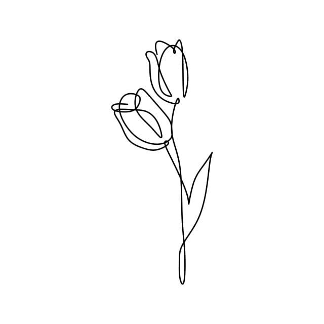 Continuous Line Art Drawing Of Minimal Flower Hand Drawn Vector Illustration Single One Design Symbol Outline Sketch Png And Vector With Transparent Backgrou Line Art Flowers Line Art Drawings Line Art
