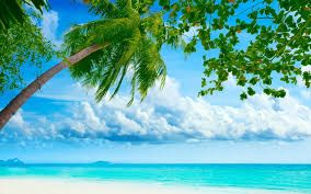 Image result for hd beach wallpaper