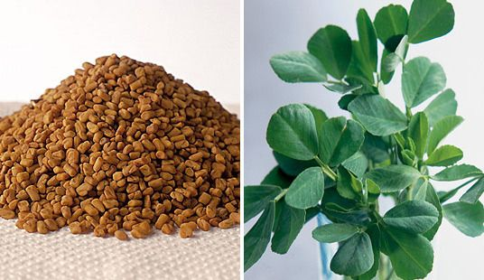 Fenugreek reduces hair fall,dryness and dandruff naturally!!