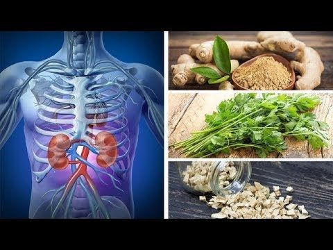 DRINK This Everyday To PEE OUT More Toxins! Support Healthy KIDNEY Function with NATURAL Diuretics https://homeremediestv.wordpress.com/2017/09/01/drink-this-everyday-to-pee-out-more-toxins-support-healthy-kidney-function-with-natural-diuretics/ #HealthCare #HomeRemedies #HealthTips #Remedies #NatureCures #Health #NaturalRemedies  #HealthCare #HomeRemedies #HealthTips #Remedies #NatureCures #Health #NaturalRemedies  http://HomeRemediesTV.com/Best-Supplements Support Healthy KIDNEY Function…