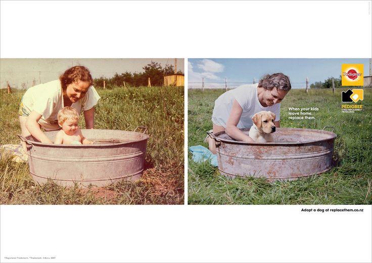 Pedigree Print Advert By Bbdo Field Ads Of The World Pet Advertising Dog Adoption Bbdo