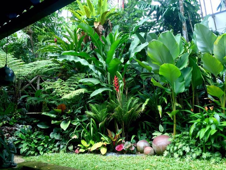 17 best ideas about tropical landscaping on pinterest for Tropical landscape