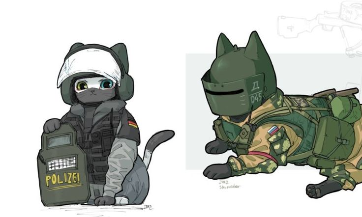 These cats were inspired by Rainbow Six- Tom Clancy's international counter-terrorist unit.