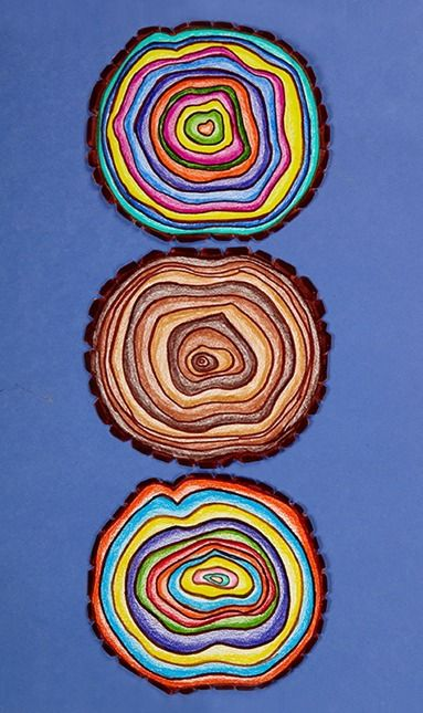 Learn about tree rings using colorful art! | elementary lesson plan