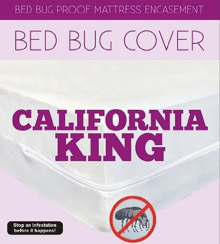 Bed Bug Proof cover and encasement Complete SetComplete California King SET  Includes cover for Mattress. California King Sauder Discount Beds   louisvuittonukonlinestore com