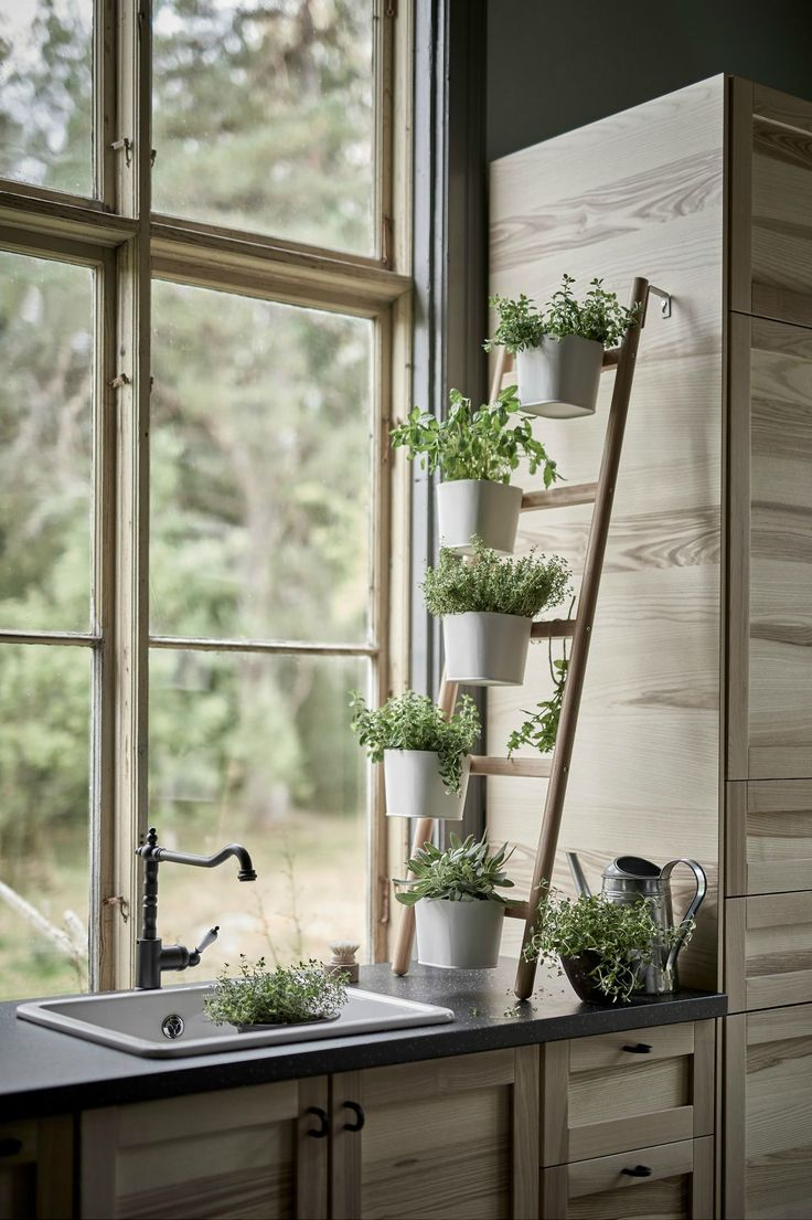 Kitchen window for plants - 13 Plant Stands To Give Your Houseplants A Home