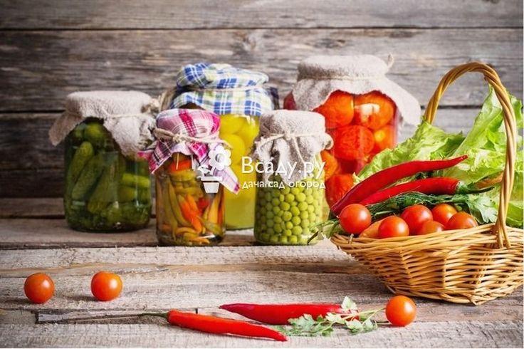 Консервирование овощей на зиму рецепты с фото: советы и рекомендации