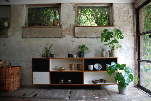 cabin, shed, wooden floor, concrete wall, interior design, plants, Peaceful Ranch