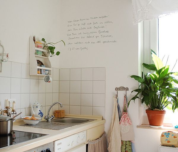 Obsessed with bright kitchens. Love the hooks and the large plant :D