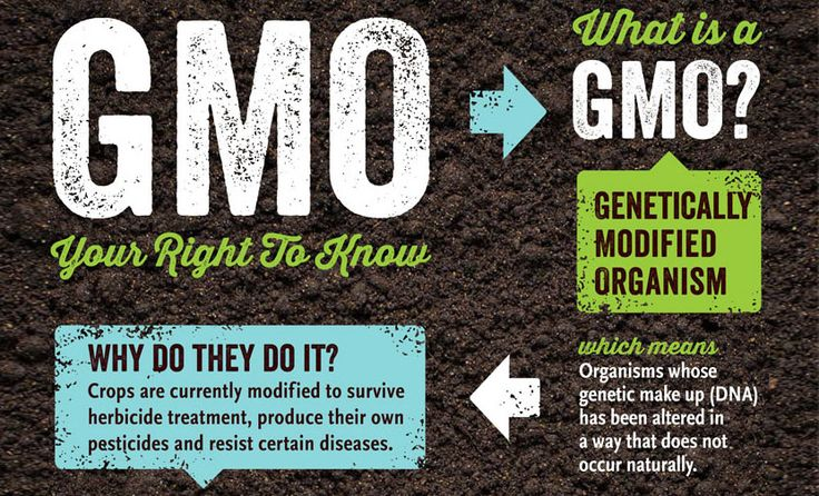 Many of us understand that something labeled as a GMO represents a product that's been altered from it's original state. But how was the product altered and when? How does that impact the nutritional value of the produce?