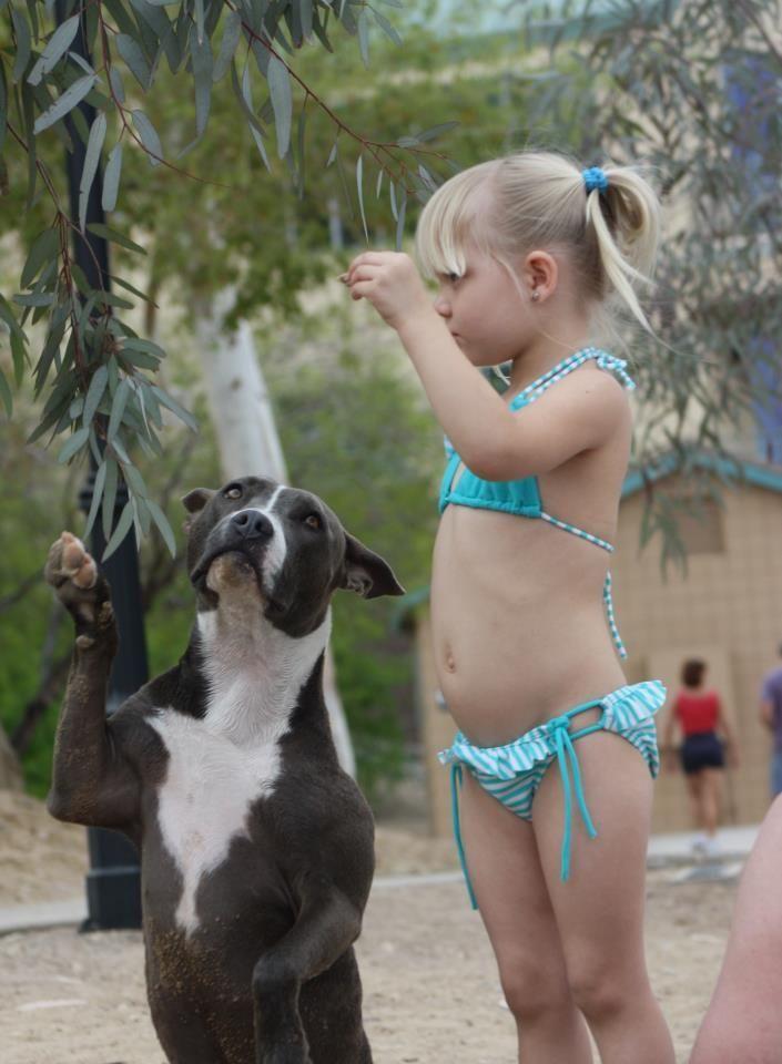 #pitbulls #pitbulllover