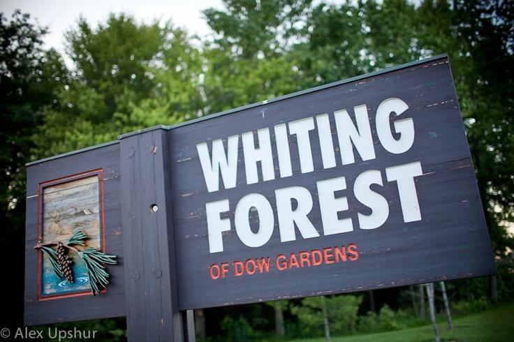 Midland (MI) United States  city photo : ... Whiting Forest on Pinterest | Forests, United States and Canopies