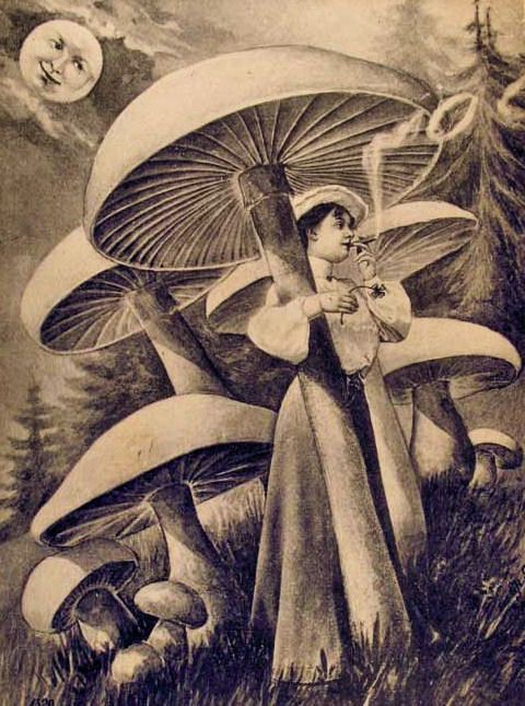 Just smokin' out beneath the giant fungi... Now exactly *what* she is smokin' is beyond me.