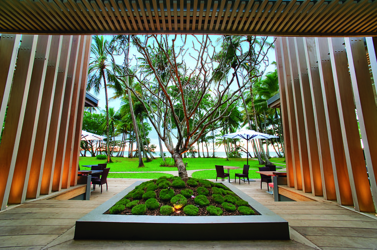 Our favorite frangipani tree that centers our beautiful beachfront restaurant. So much green- so much nature!