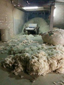 Ullkuleteppene våre lages av ull fra New Zealand. Ingen sauer eller lam skades under denne prosessen. <3