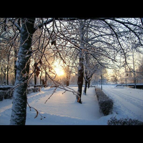 Winter wonderland Sweden Torshälla.
