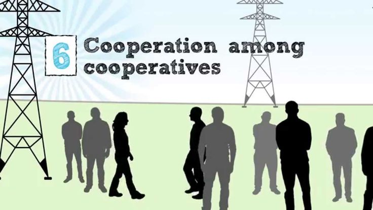 Co-Mo Electric Cooperative: It seems utility companies are a popular vehicle for cooperative business models. This is both surprising and quite encouraging. This image links to a YouTube video about the principles of cooperative business, produced by Co-Mo Electric Cooperative.